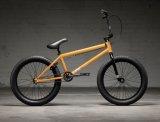2022 KINK/GAP (Gloss Hazy Orange)